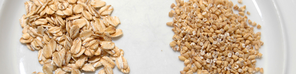 oatmeal-banner.jpg